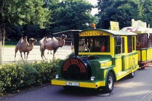 Zoo-Express